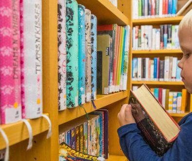 Podręczniki szkolne przez internet oferują księgarnie internetowe z tanimi podręcznikami. Wybór podręczników szkolnych zgodnych z podstawą programową na nowy rok szkolny jest niezwykle kosztwony.